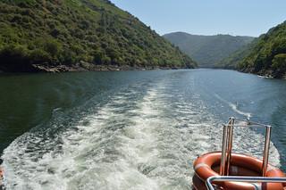 Río Sil | by jorgetorrecilla