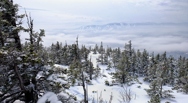 A View From Puzzle Mountain, Maine