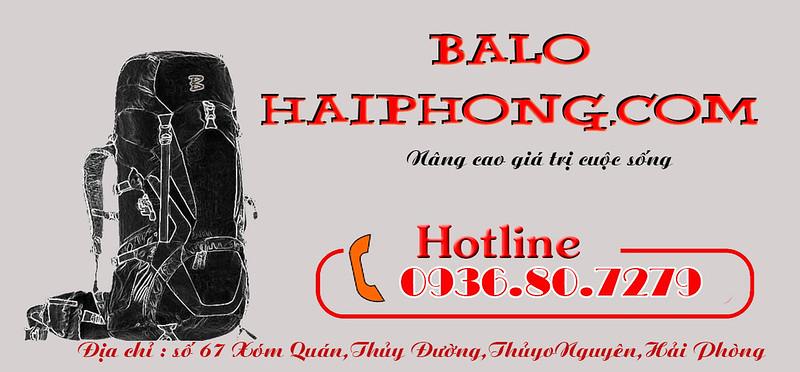 Logo+hotline