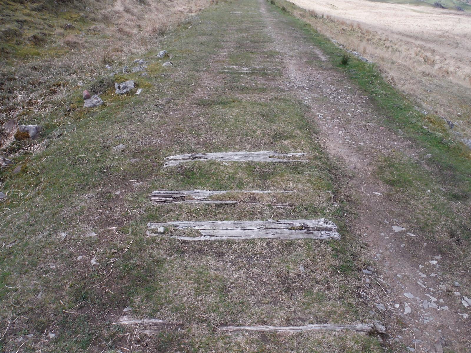 Sleepers on Dismantled Tramway SWC Walk 307 - Fforest Fawr Traverse (Craig y Nos to Llwyn-y-celyn)