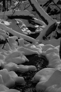 Black and White Snow and Stream (2009)