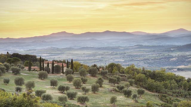 Tuscan Landscape @ Seggiano