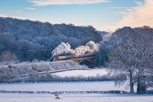 Steaming through a  Winter wonderland ...