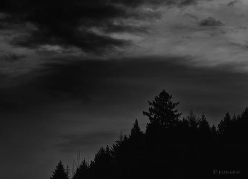 sky clouds silhouette bw blackandwhite