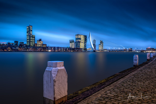 Waiting For The Blue Hour In Rotterdam I