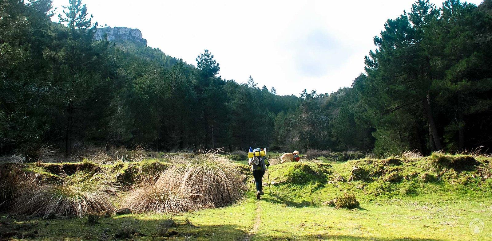 Cañada del Avellano