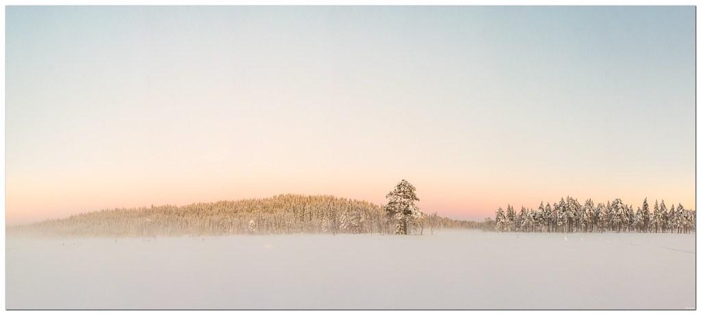 Winterly sunset
