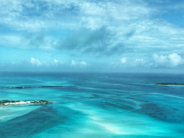 Captured earlier today in the northern Exuma Cays #Bahamas