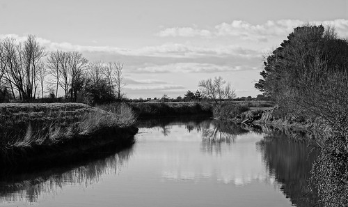 clevedon northsomerset england uk gb greatbritain outdoors sony a6000 blackwhite blackandwhite bw monochrome river water sky trees riverbank stream grass field nature floating free reflections clouds