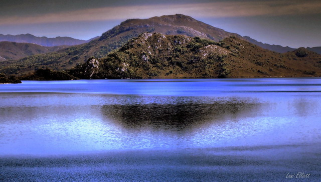 LAKE PEDDER REFLECTIONS