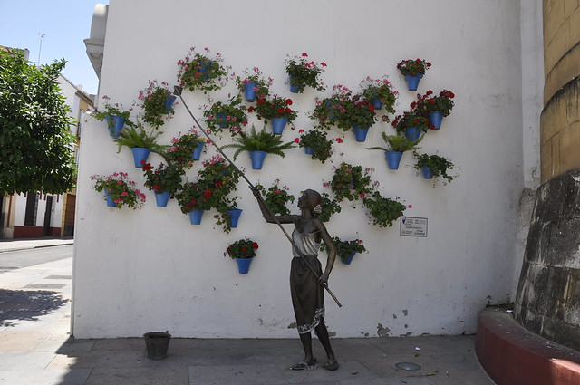 homenaje a las cordobesas que riegan los geranios-cordoba