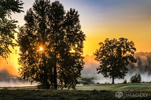 sunrise pearlclub nature trail fog lake landscape summit foggy kentucky usa