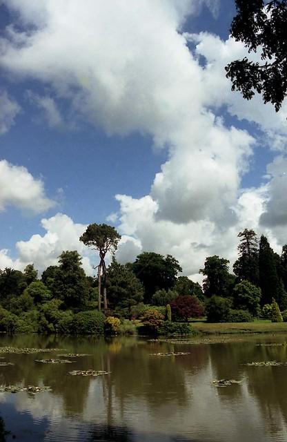National Trust - Sheffield Park, East Sussex  (01)