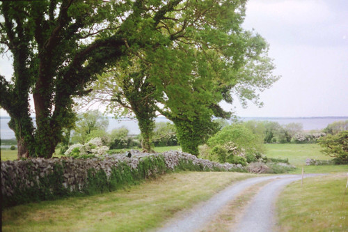 film minoltasrt100 ireland galway countygalway loughcorrib lakecorrib menlo killoughter angliham anglihamhouse gortacallow gortachalla corrib