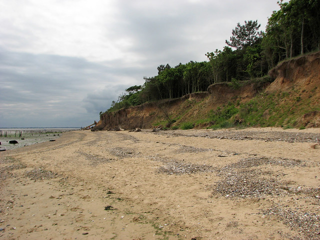 The coast at Cudmore Grove Country Park, Mersea Island
