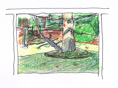 sketch crayon pen penandink backyard tree tracing ink