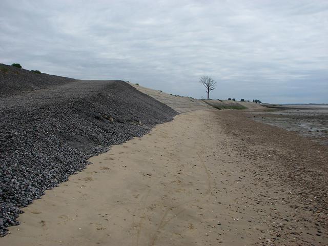 The south coast of Mersea Island