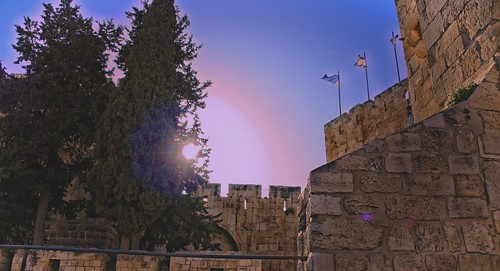 senset sunset cypress jerusalem