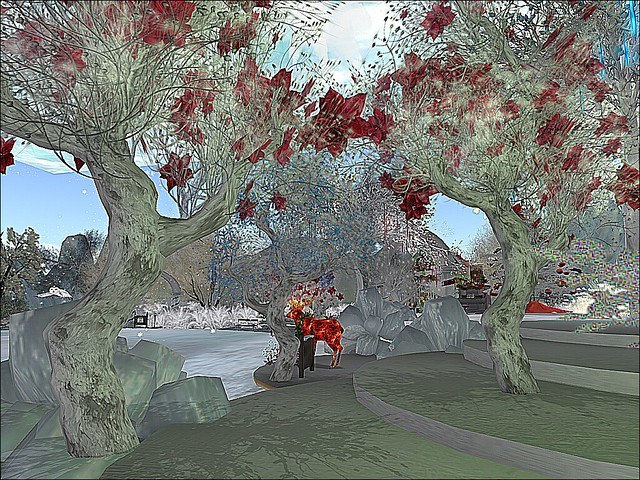 Winter Wonderland at Two Moon Paradise  -Stained Glass Under  White Poinsettia Trees