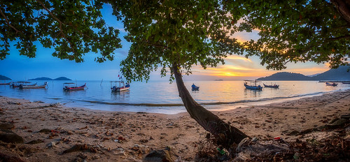air beach clouds defish fisheye georgetown georgetownpenang landscape light malaysia nature paysage penang penangisland pulaupinang samyang samyang12mmf28edasncsfisheye samyang12mmf28 seascape seashore shore sun sunlight boats permatangdamarlaut sunset sunsets tree green
