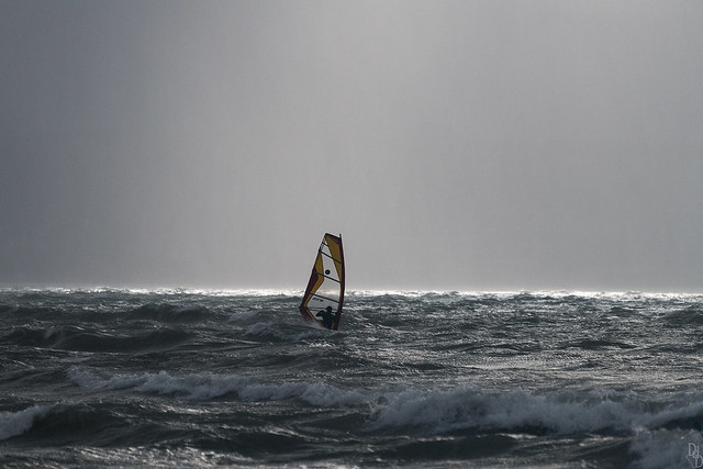 Surfin' Préverenges