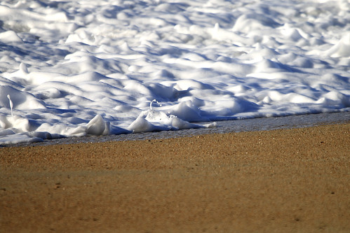 Crème d'écume sur lit de sable   by Cédric Darrigrand
