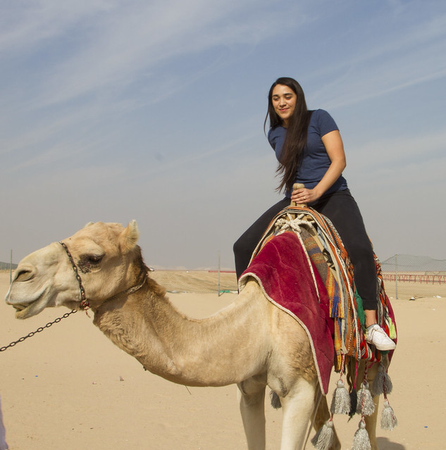 Camel Racing - Kuwait