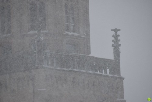 europe europa germany deutschland winter moenchengladbach rheydt snow nature natura przyroda