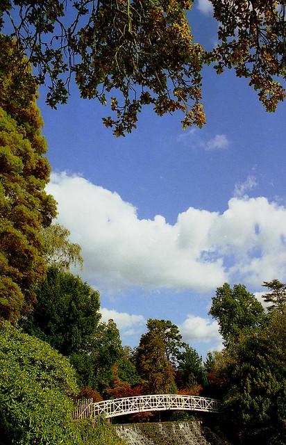 National Trust - Sheffield Park, East Sussex  (06)