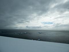 Cross country skiing on Rongé Island