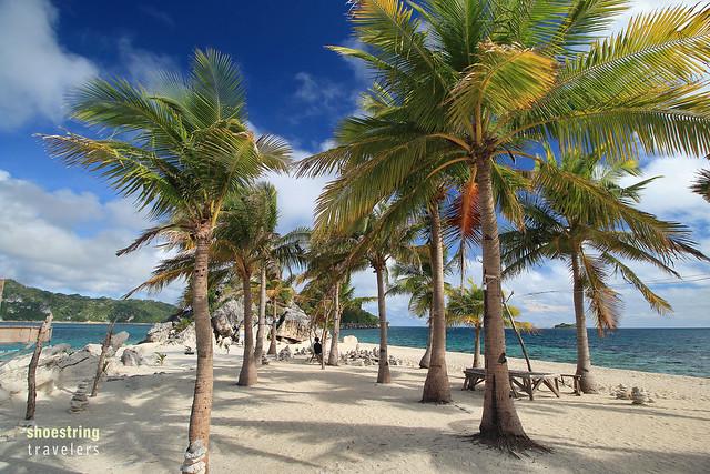 Palms at Cabugao