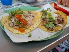 Tacos de barbacoa (borrego)