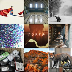 Foxes (Suki Fleet) - moodboard
