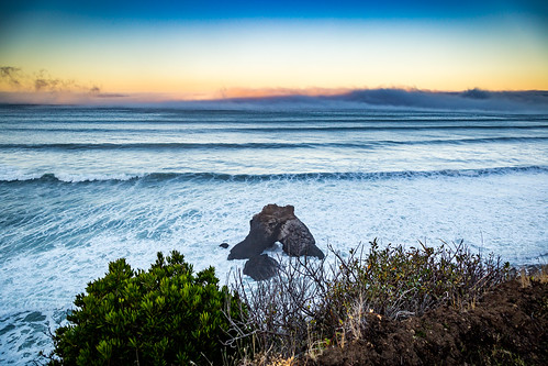 lostcoast needlerock neddle rock pacific ocean sky fog foggy water sunrise sunset leaves trail usalrd outside nature