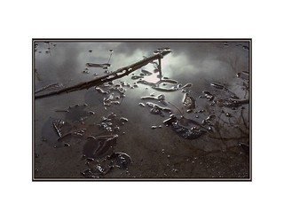 Reflets d'automne / Fall réflection  1970 | by bernard marenger photo imagination