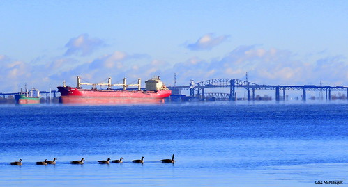 hamiltonharbour haze ship federalweser marshallislands bridge burlingtonskywaybridge geese birds water lake hamiltonontariocanada landscape scene