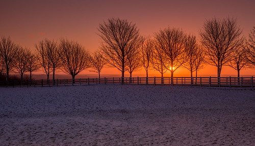sunrise lineoftrees sheffield peakdistrict sheephillroad december winter wintersunrise