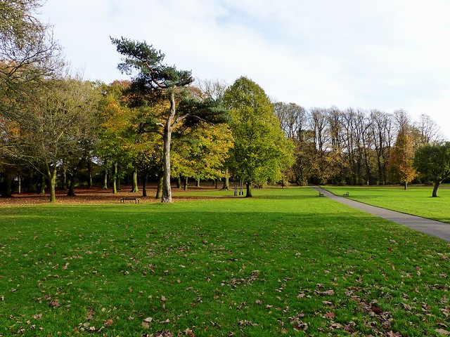 Fancy a walk in the Park, Weelsby Woods Grimsby