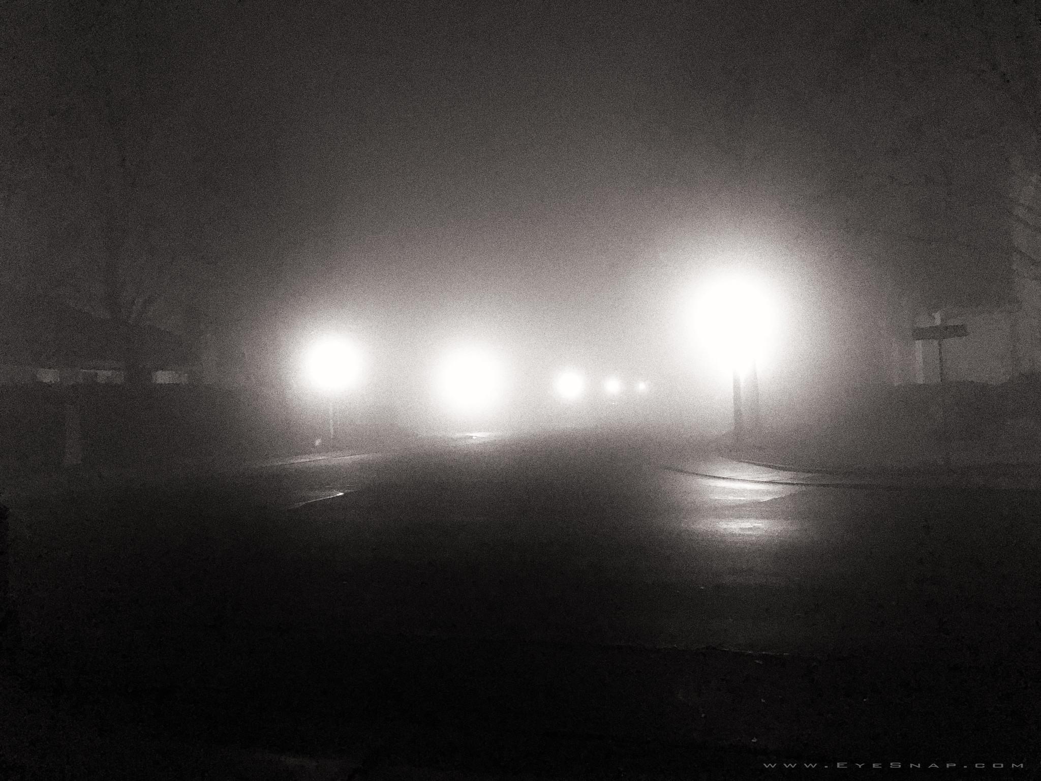 foggy_0369