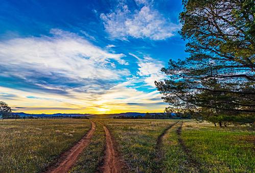 path tracks dual duality grass field green sunset blue clouds goldenhour evening australia canberra tree tyretracks double