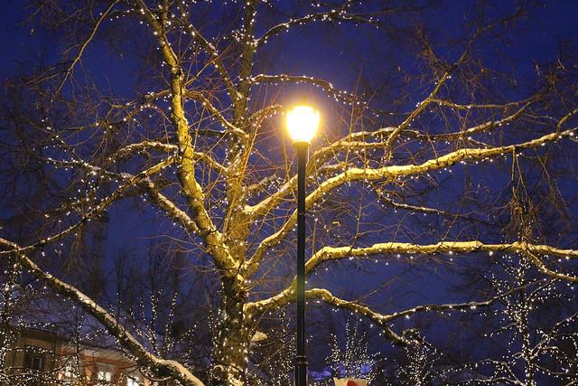 Lights / etdrysskanel.com