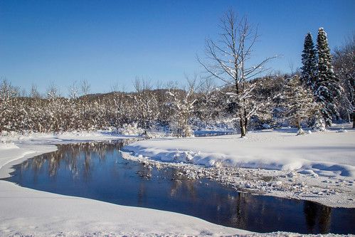 winter michigan river flow cold deep tree nature reflections ice water ellsworth morning