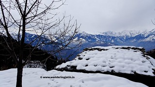 Blanketed in snow | by wanderingjatin