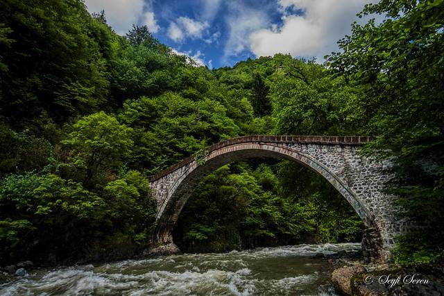 Rize / Çamlıhemşin / Mikron Köprüsü