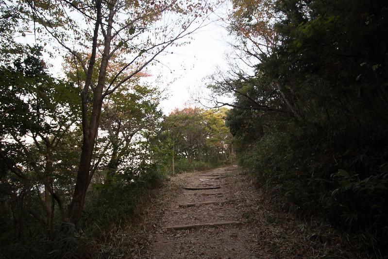 20161106_飯野山(讃岐富士)_0041.jpg