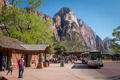 Bus de Zion National Park