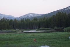Mount Dana and Mono Lake
