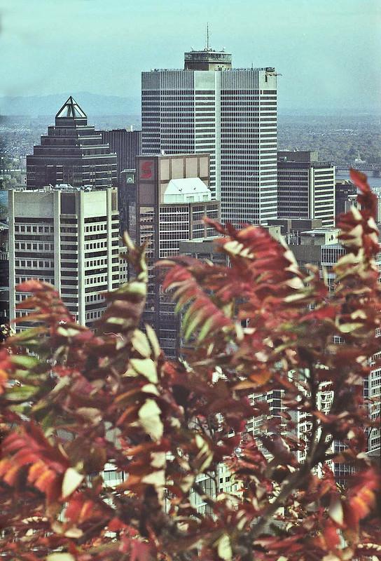 2001 fall mtryl-3
