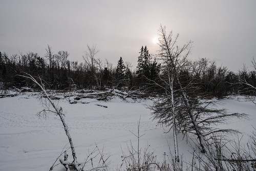 december minnesota saintcroixstateforest stcroixstateforest tamarackriver frozen river snow stateforest winter hinckley unitedstates us