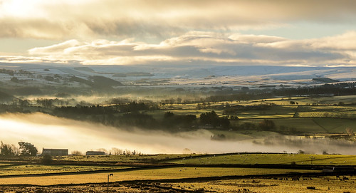 countryside northumberland snow grass fog view allendale catton hill north sunrise early morning